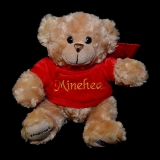 'Minehead' Teddy Bear - Misc Items - Various Brands