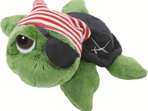 Rocky the Pirate Turtle