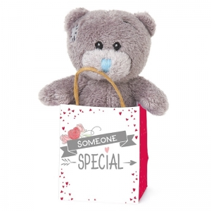 Bear in a Bag Someone Special