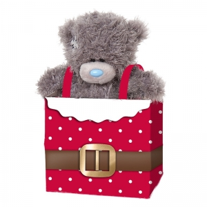 Bear in Gift Bag