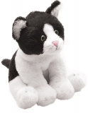 Black & White Cat - Suki