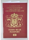 Teddy Bear Passport - Merrythought