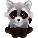 Bandit Raccoon