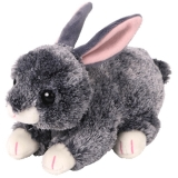 Smokey grey rabbit