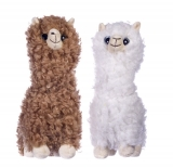 White alpaca - Whitehouse Leisure