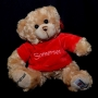 'Somerset' Teddy Bear : Red Jumper Version